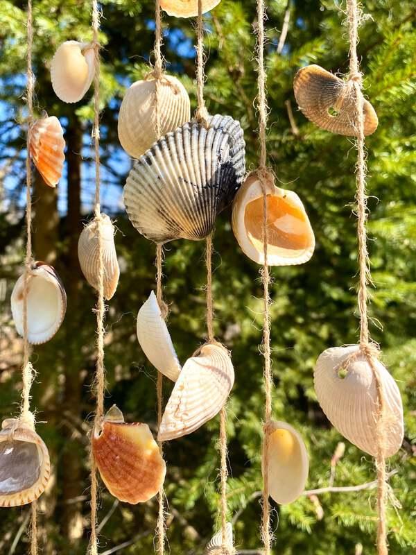 Seasheel wind chime