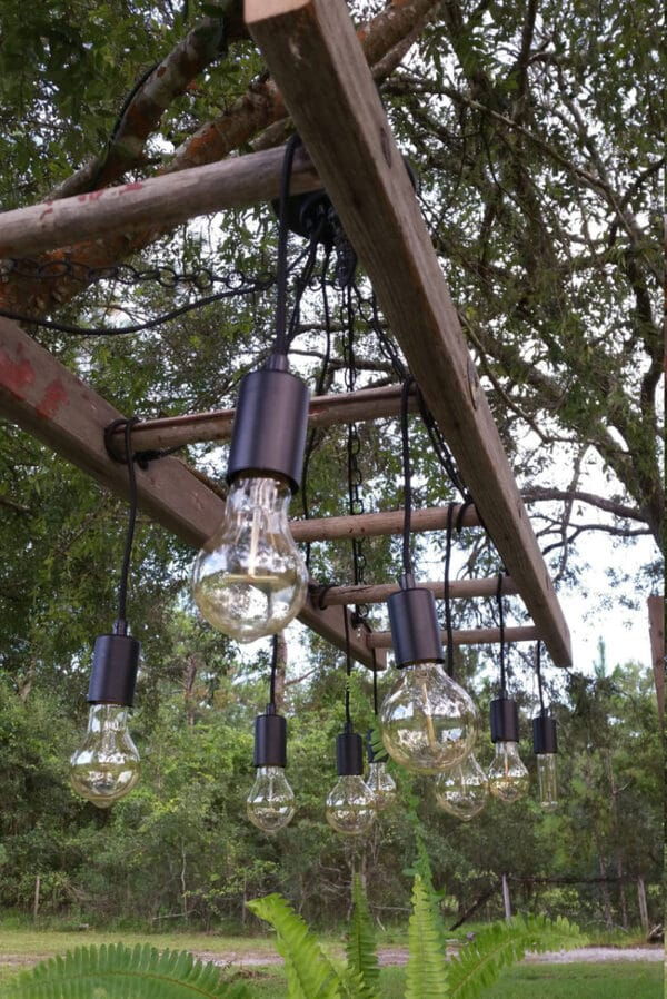 Edison lights on ladder