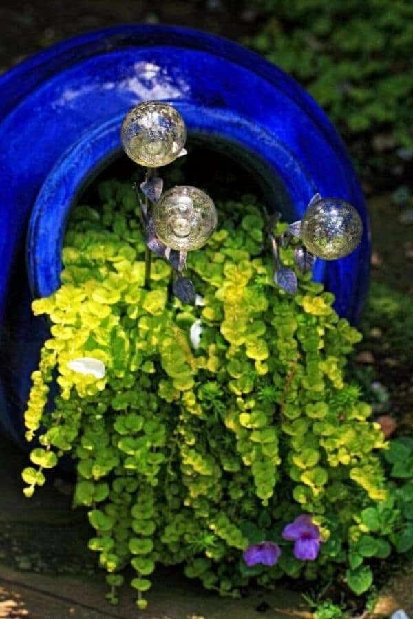 Greenery and gazing balls spilling out of blue pot