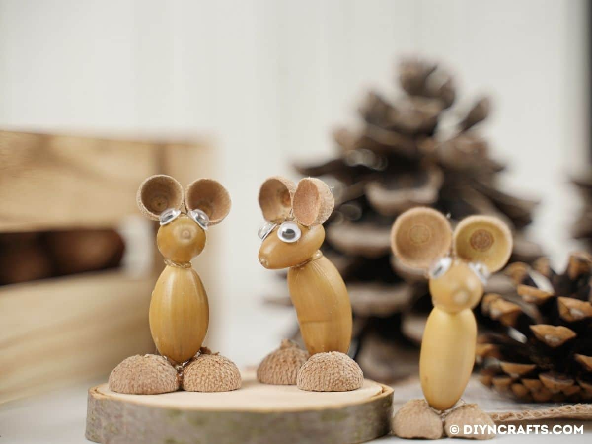 Acice mice on wooden clies in pine cones