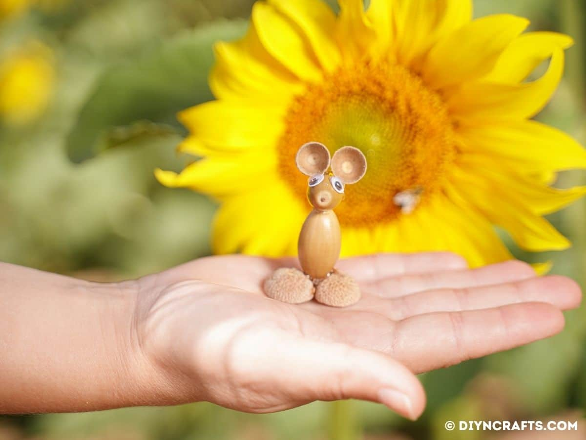 Hand holding acorn mouse by yellow flower