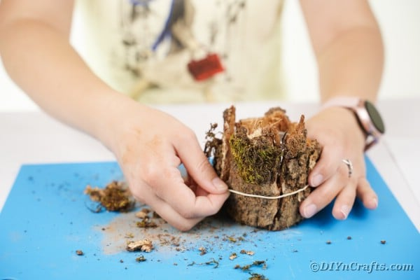 Adding bark to candle holder