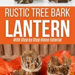 Tree bark lantern collage