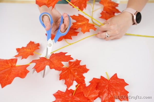 Cutting leaves from stems