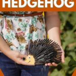 Woman holding hedgehog with black straws