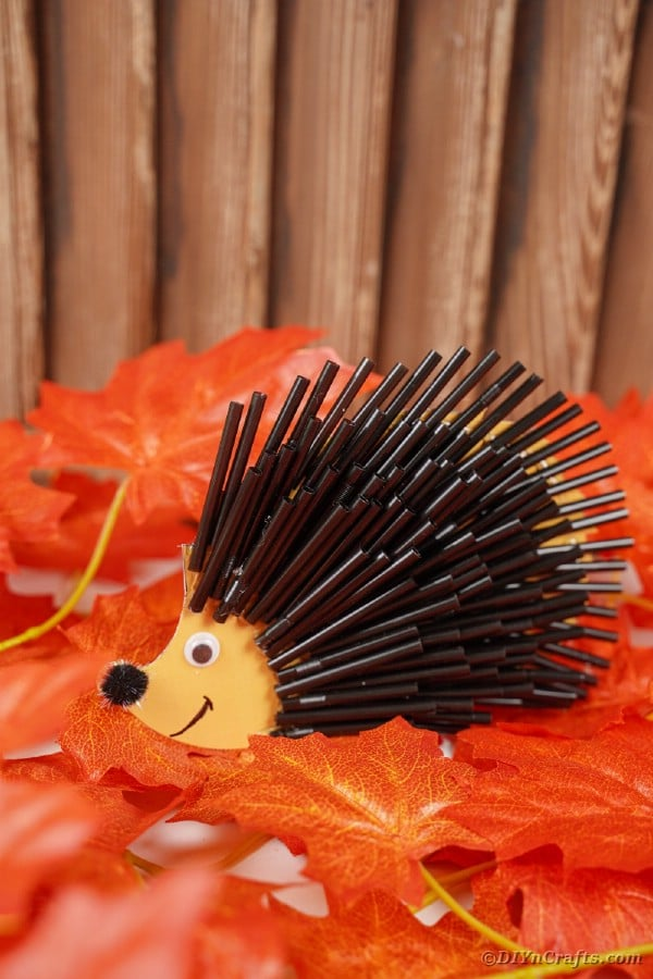 Black straw hedgehog on fall leaves