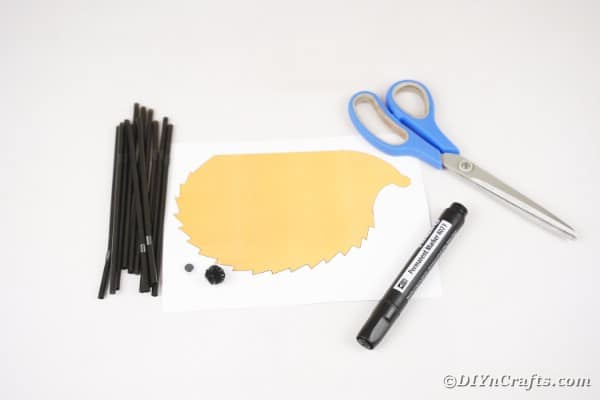 Supplies for black straw hedgehog