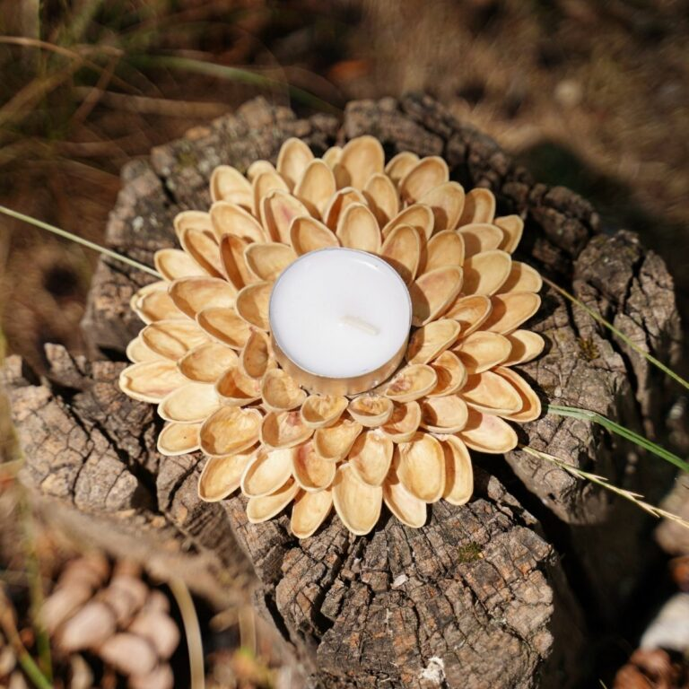 Pistachio shell candle holder on stump
