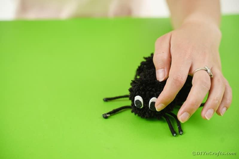 Gluing eyes onto pom pom spider