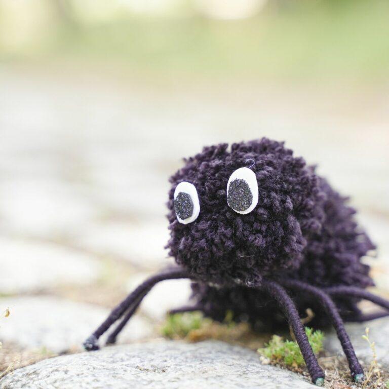 Pom pom spider on cobblestone