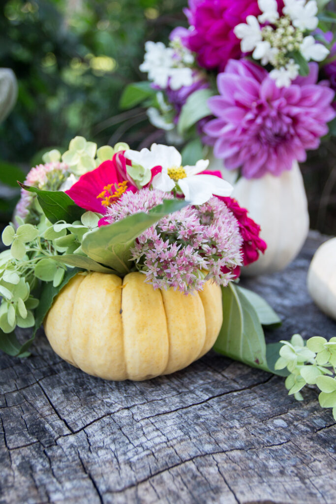 Yellow pumpkin filled with flowers