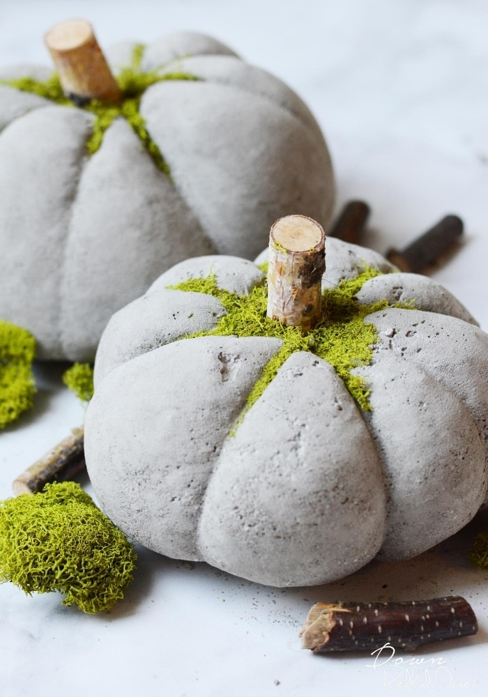 Concrete pumplins with moss on top