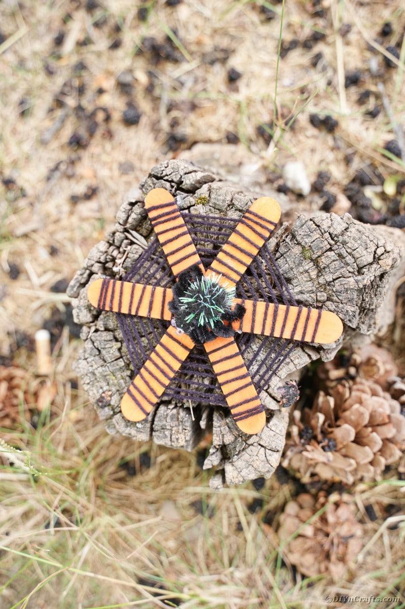Craft stick spider web on stump