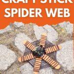 Craft stick spider web on cobblestone