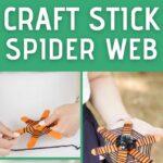 Craft stick spider web collage