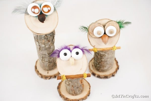 Trio of wooden owls on white table