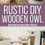 Wooden decorative owls collage