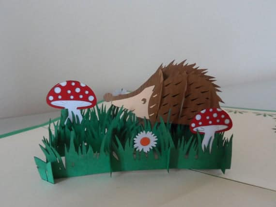 Hedgehog 3d Pop up Card Blank Birthday sku 110 | Etsy