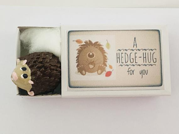 A Hedge-hug for you in a Box Mini Prickly Hedgehog Gift | Etsy