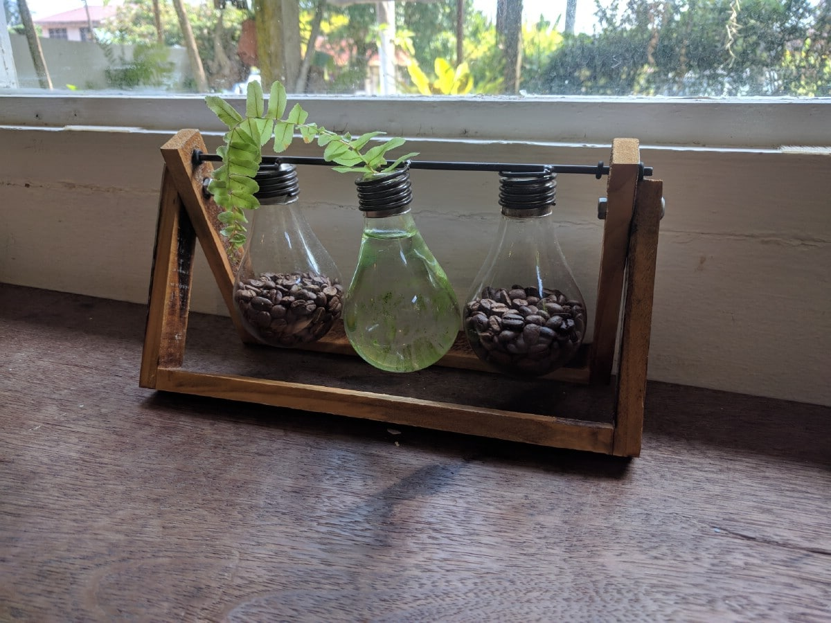 Light bulb planter.
