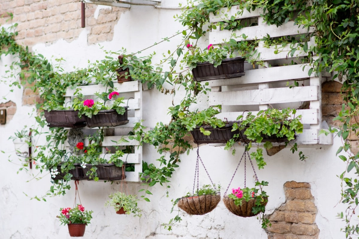 Wall flower garden support.