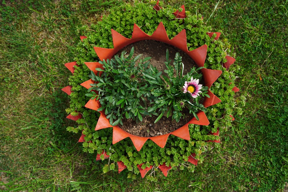 Decoratieve tire planter.