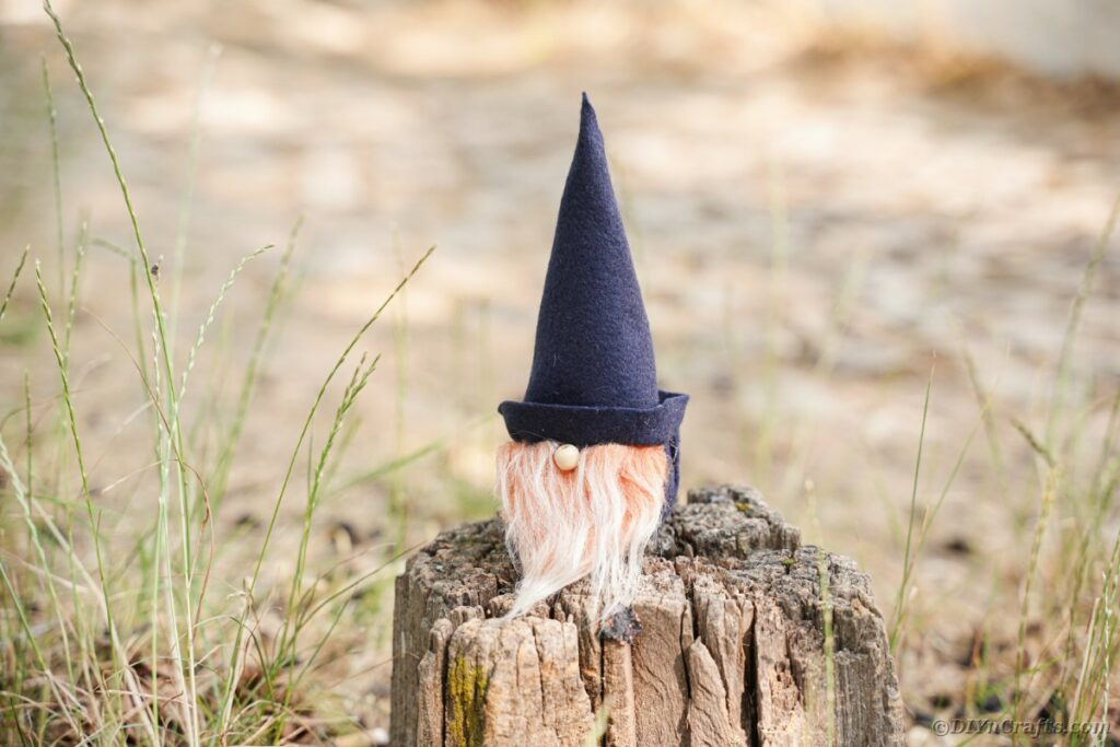 Gnome on tree stump