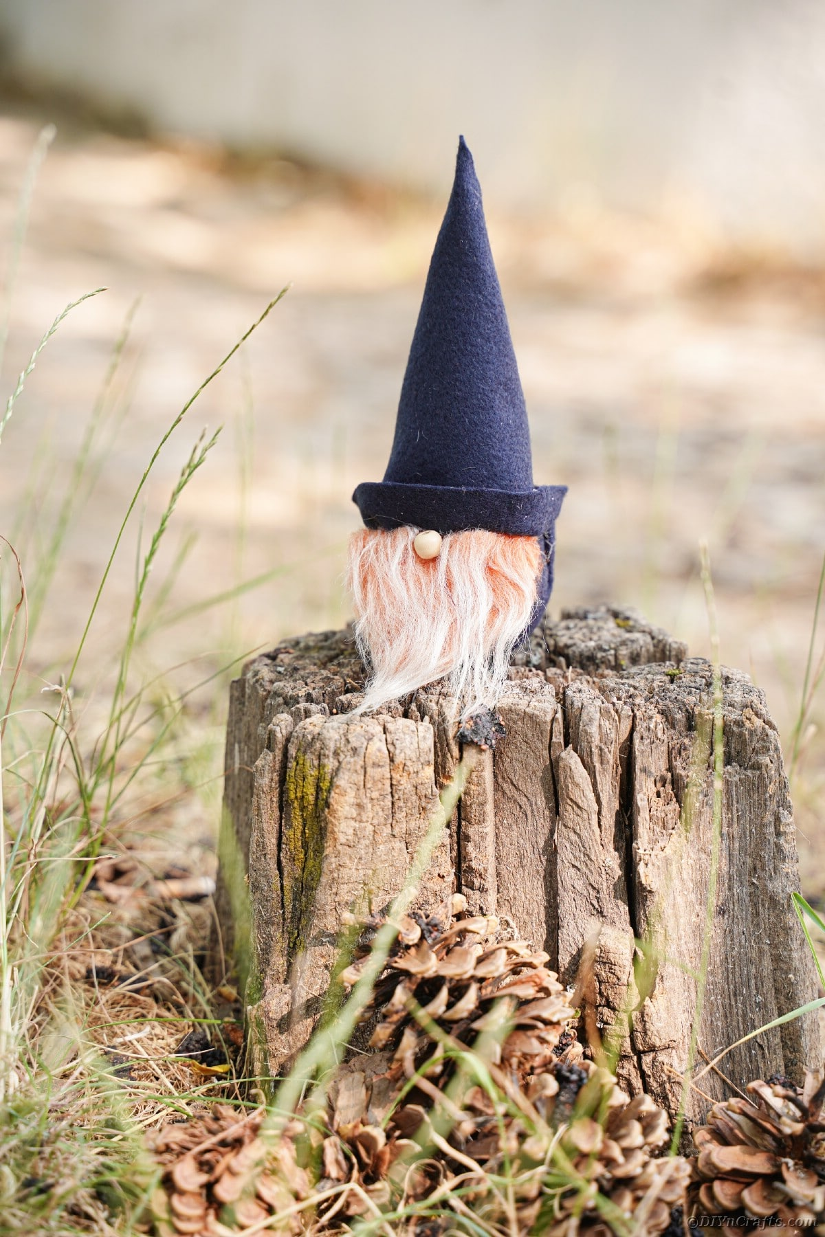 Gnome on tree stump