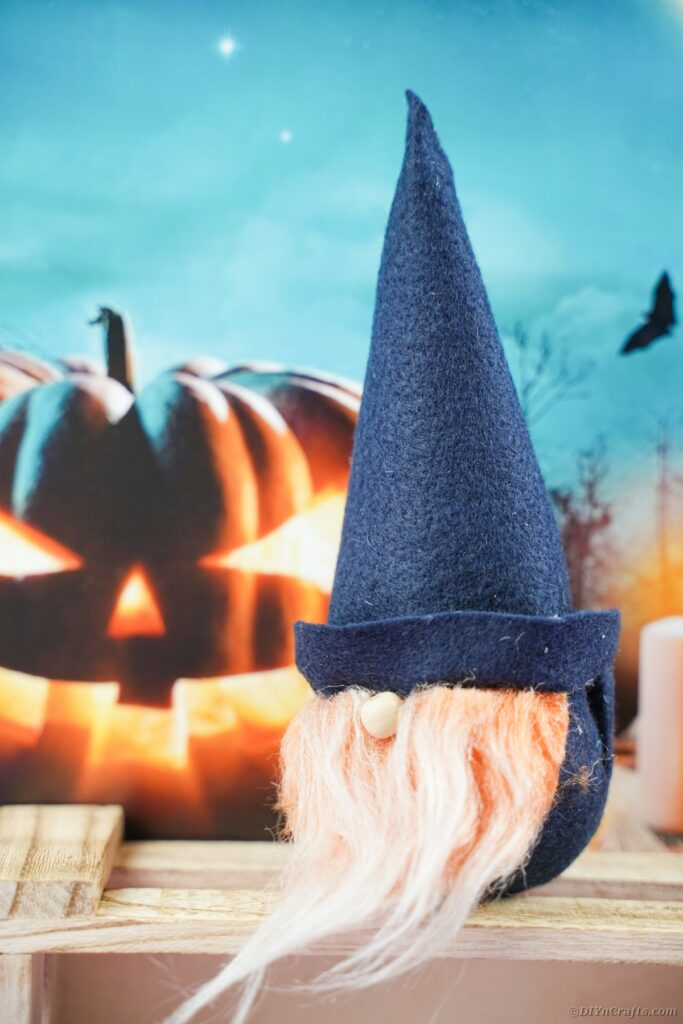Gnome by pumpkin sign