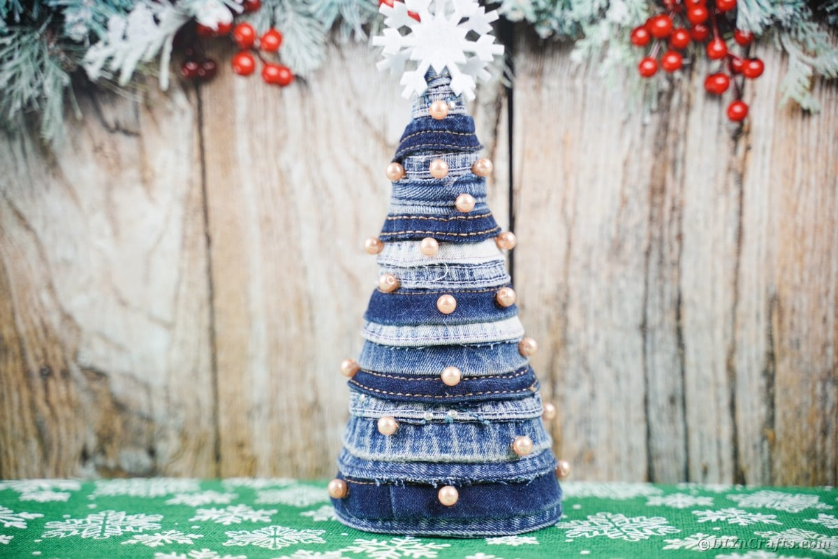 Mini blue jean tree in front of wood