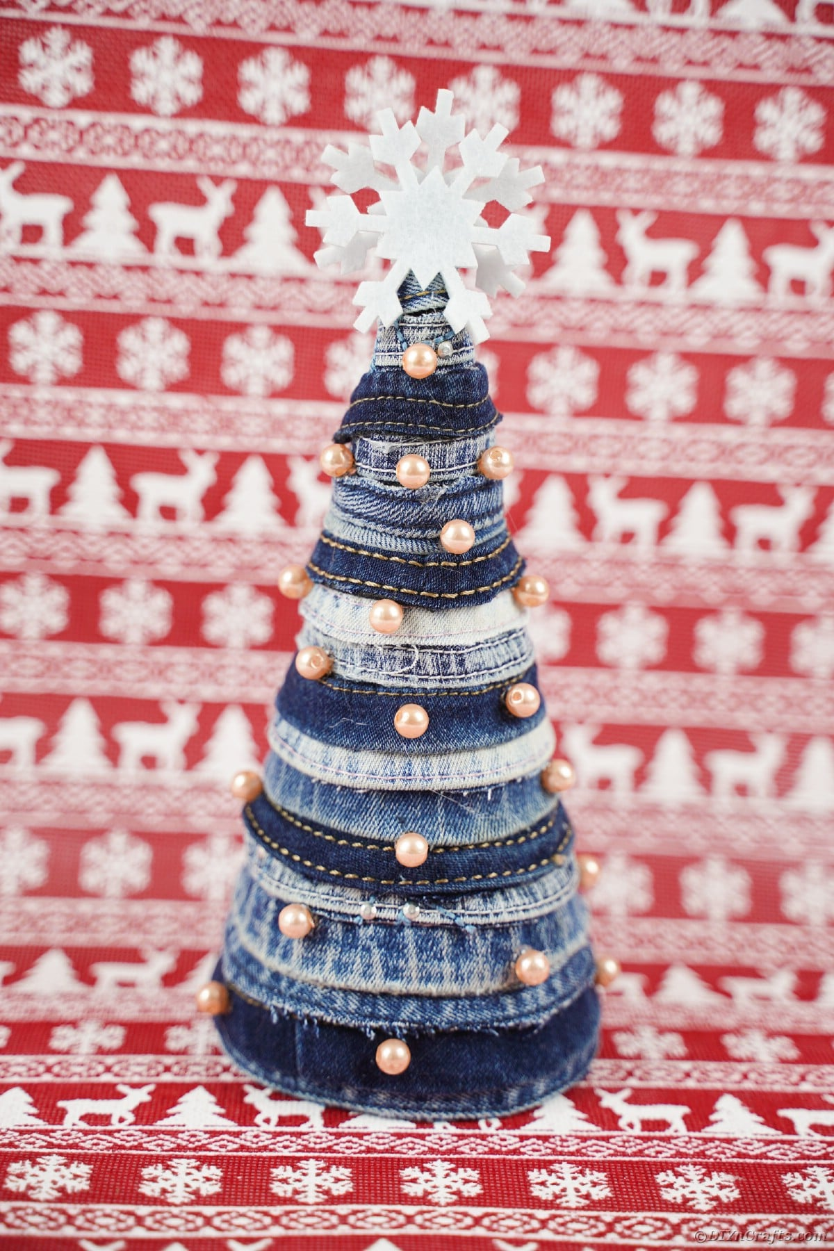 Mini Christmas tree in front of red holiday paper