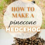 Pinecone hedgehog collage