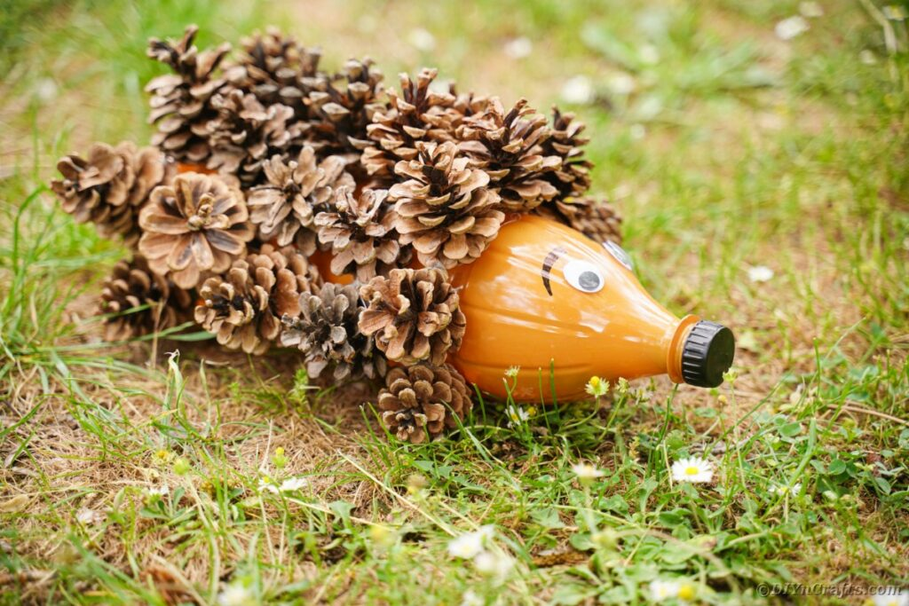 Hedgehog decoration on grass