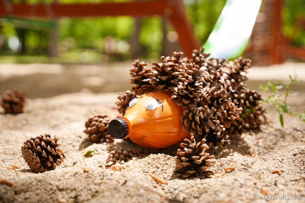 Pinecone hedgehog on sand