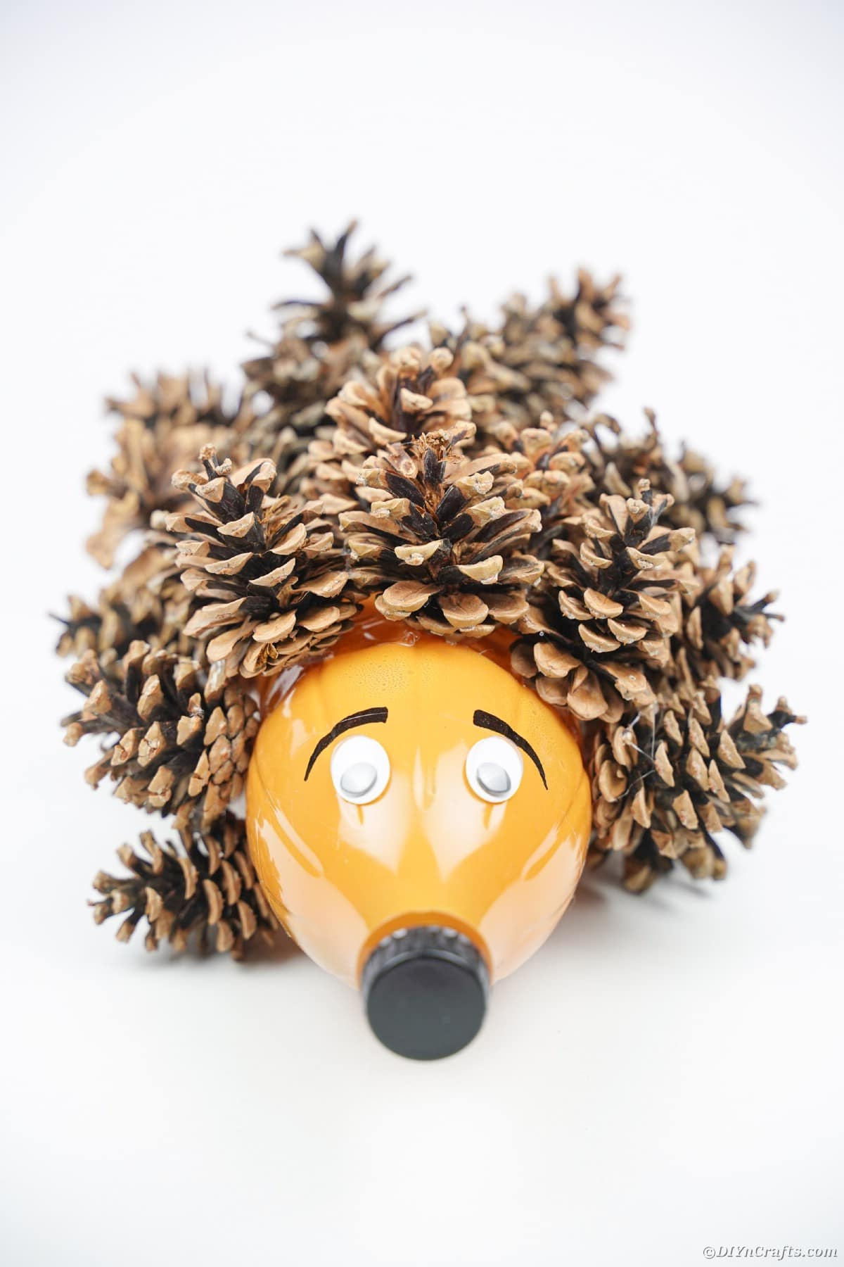 Pinecone hedgehog on white surface
