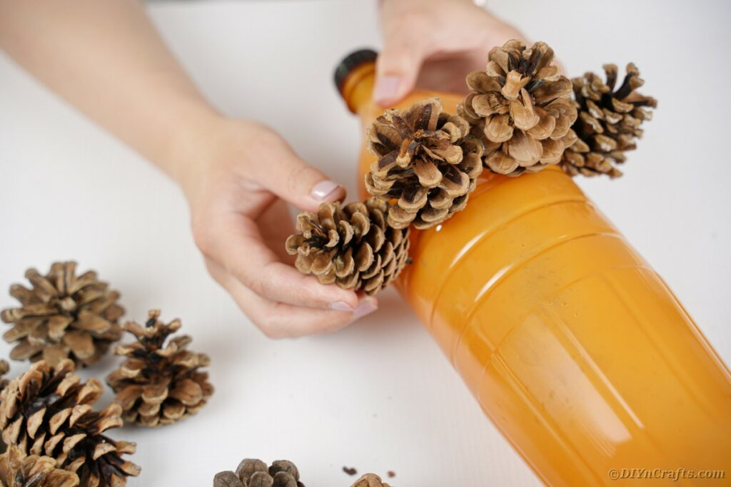 Gluing pinecones on bottle