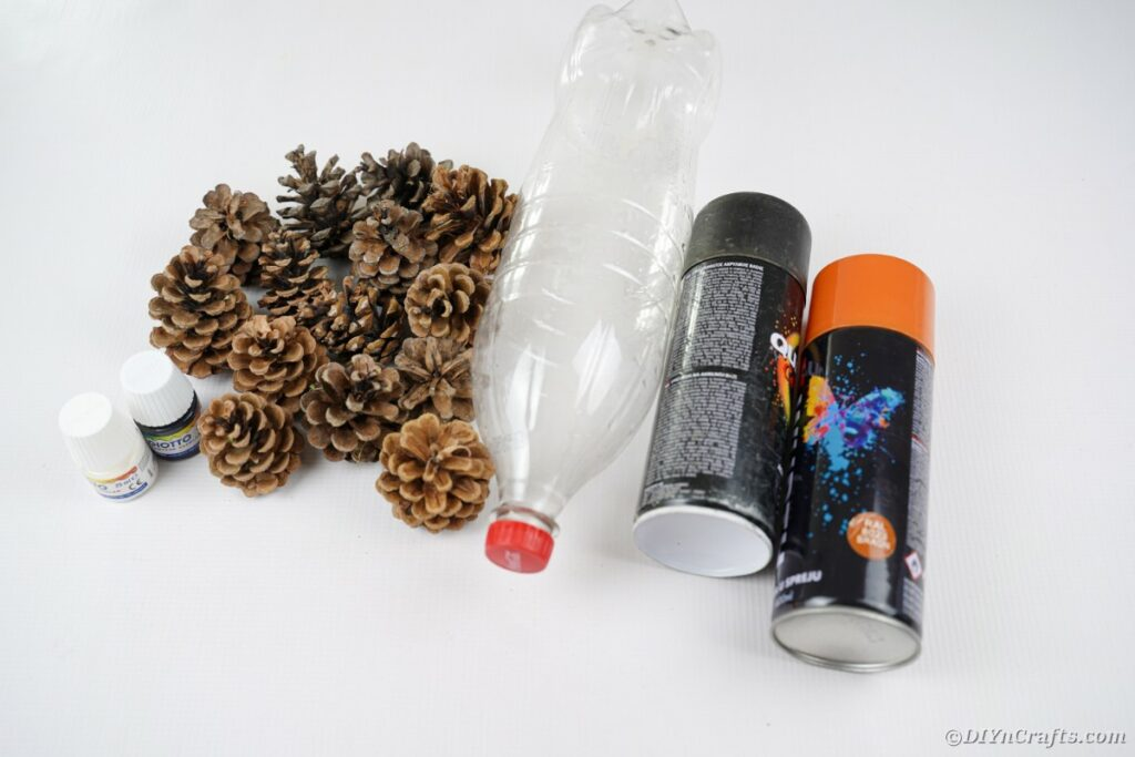 Pinecone hedgehog supplies