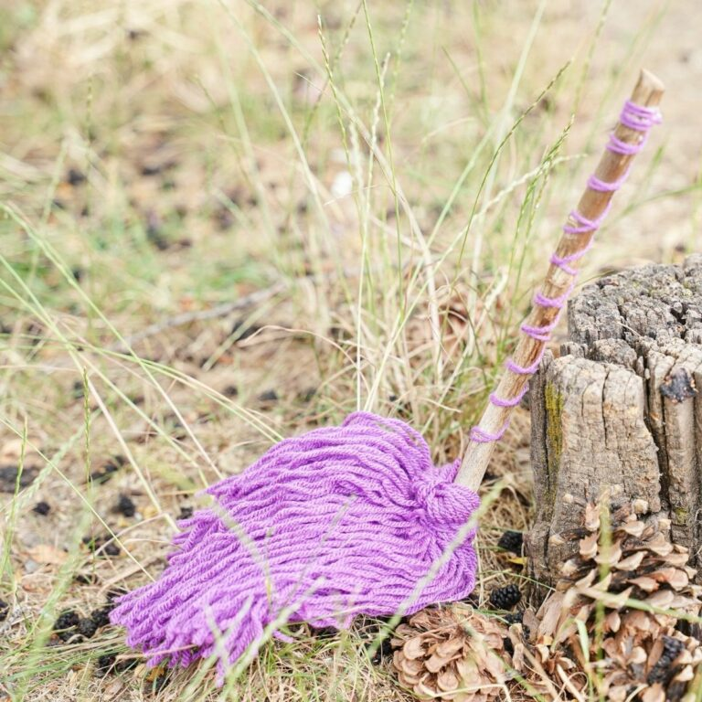 Witch broom against stump