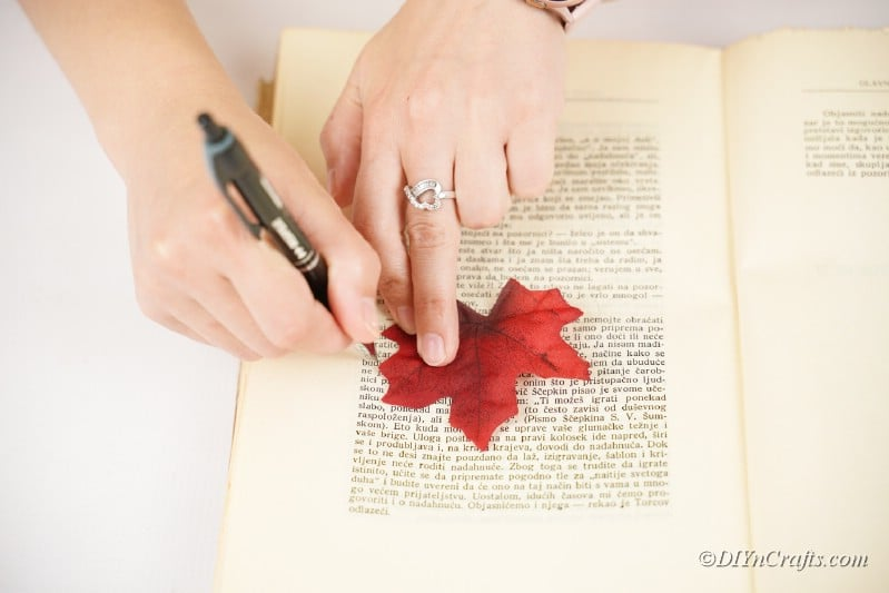 woman cutting leaf on book page