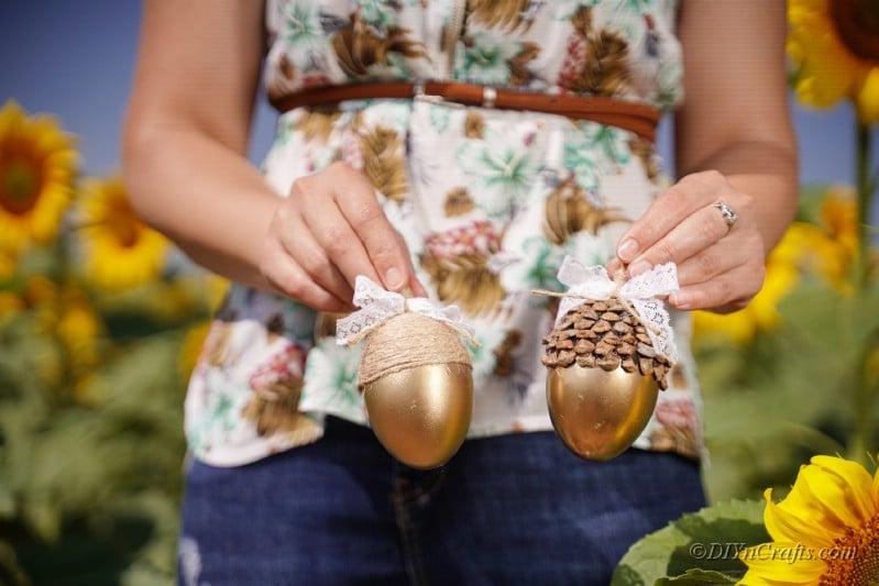 ayçiçeği alanında iki altın meşe palamudu tutan kadın