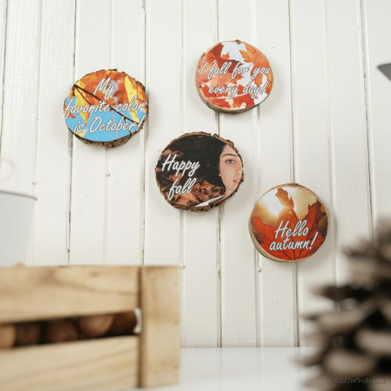 Wood slices with fall images hanging on white shiplap wall