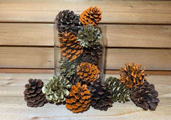 Fall Decorative Painted Pinecones Brown Gold & Orange | Etsy