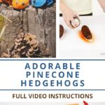 Step by step pine cone hedgehog tutorial