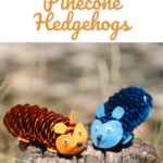 Pine cone hedgehog cute craft