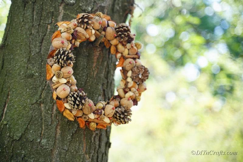 wreath hanging on tree