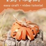 Finished pumpkin craft on a stump