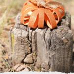 Rustic pumpkin craft on a stump