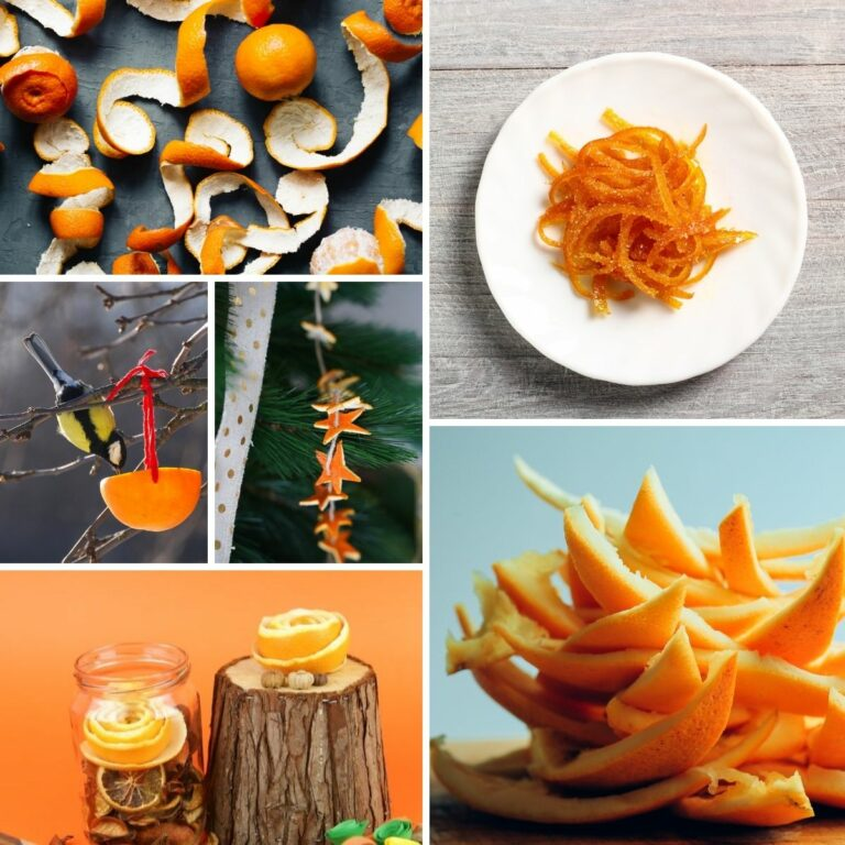 Orange peel uses collage