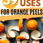Orange peel uses collage