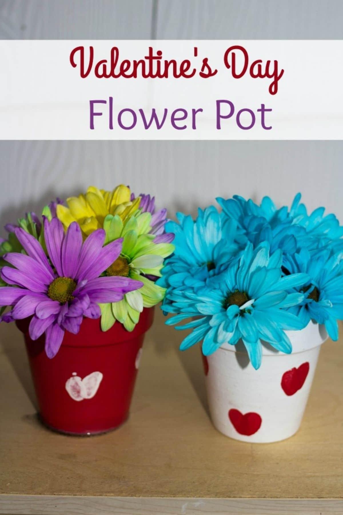 Valentine flower pot